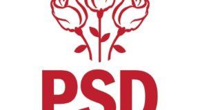 PSD : Astăzi am câștigat o luptă importantă în războiul nostru cu privire la standardele duble din UE! (P)