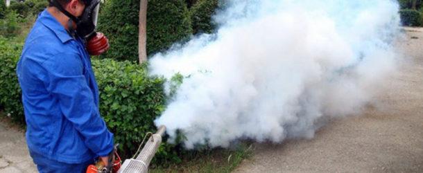 Tratamente de combatere a căpușelor și țânțarilor