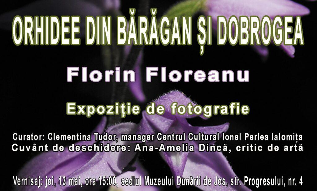 Expo Florin Floreanu